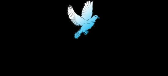 cropped-ldsem_master-logo2.png