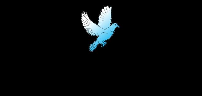 LDSEM_Master Logo2